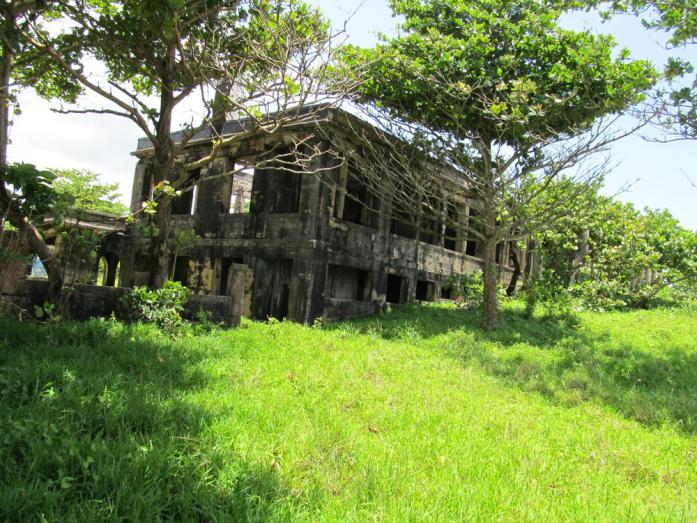 Name:  mansion 1b.jpg Views: 670 Size:  101.8 KB