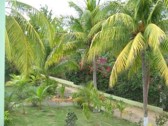 Name:  HP Gardens.jpg Views: 141 Size:  99.6 KB
