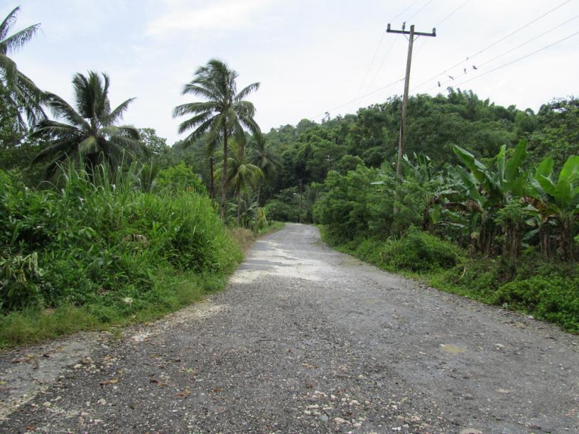 Name:  road2.jpg Views: 285 Size:  97.1 KB