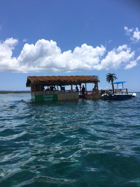Name:  Fantasy Island(1).JPG Views: 487 Size:  121.4 KB