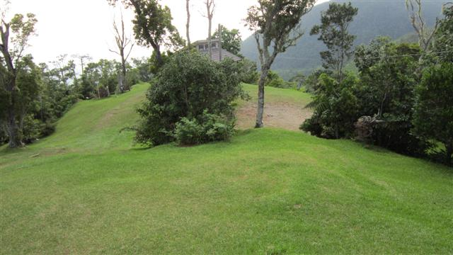 Name:  lawn.JPG Views: 356 Size:  48.5 KB