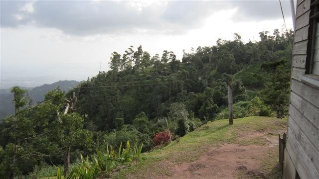 Name:  view.JPG Views: 346 Size:  41.5 KB