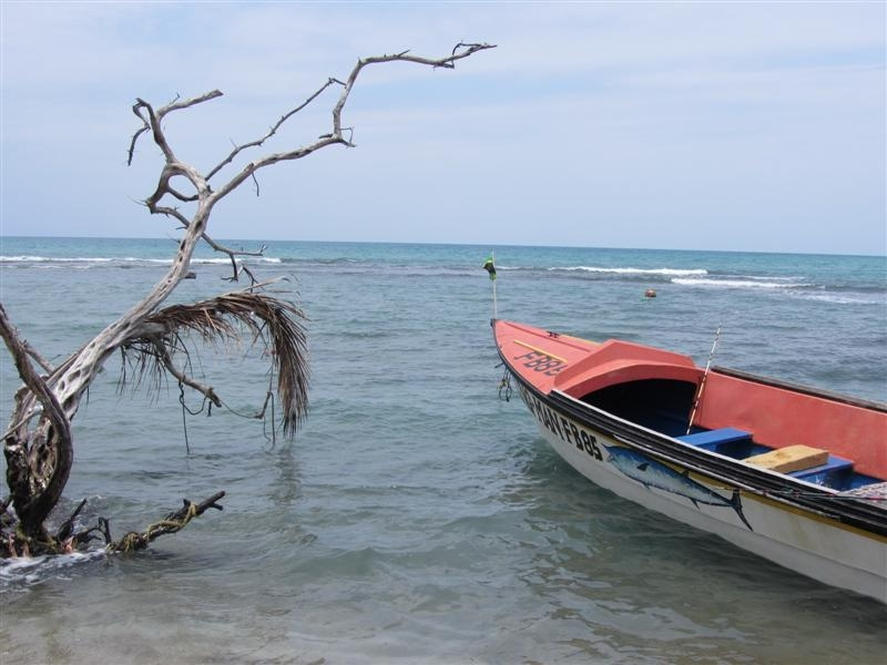 Name:  Fishing Boat (Medium).JPG Views: 1206 Size:  184.8 KB