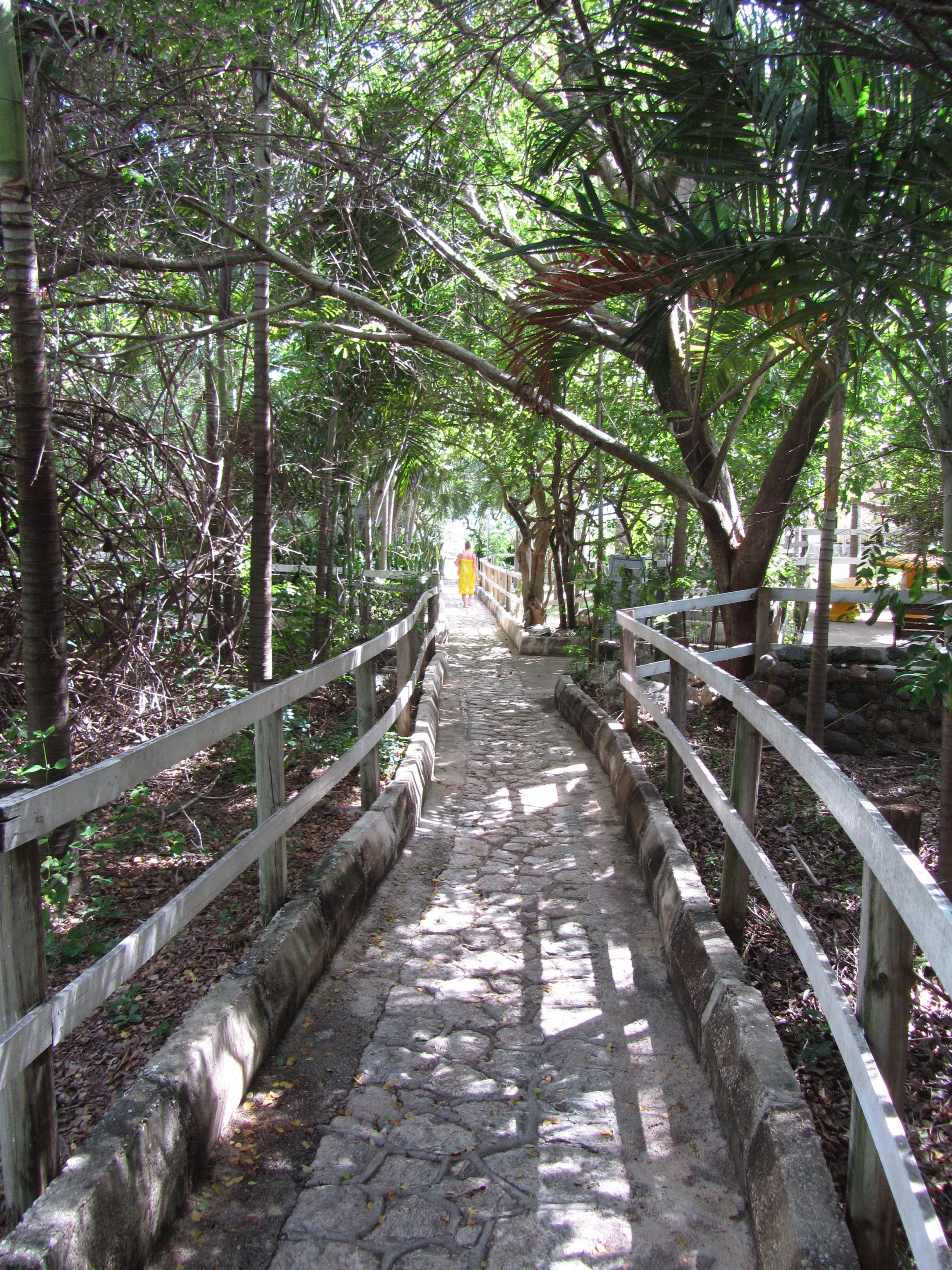 Name:  Jamaica 11-11-13 - Treasure Beach Hotel - 6081.jpg Views: 457 Size:  2.38 MB