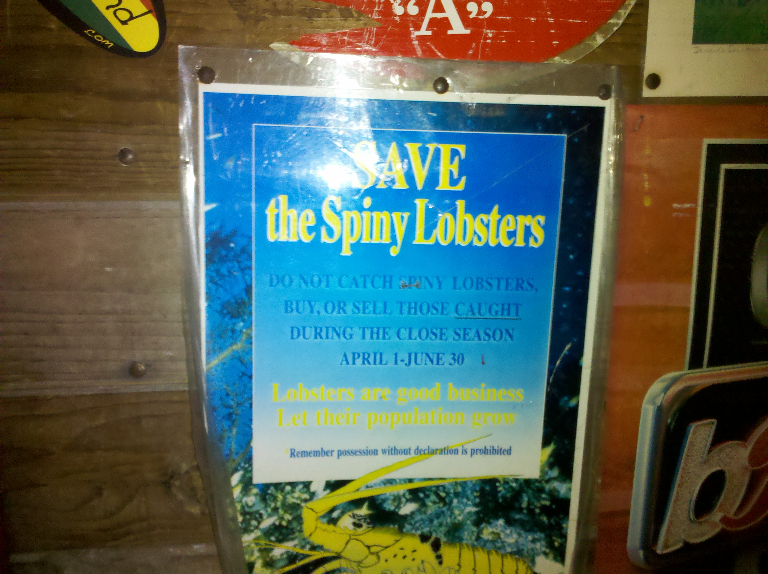 Name:  Overstanding the Lobster.jpg