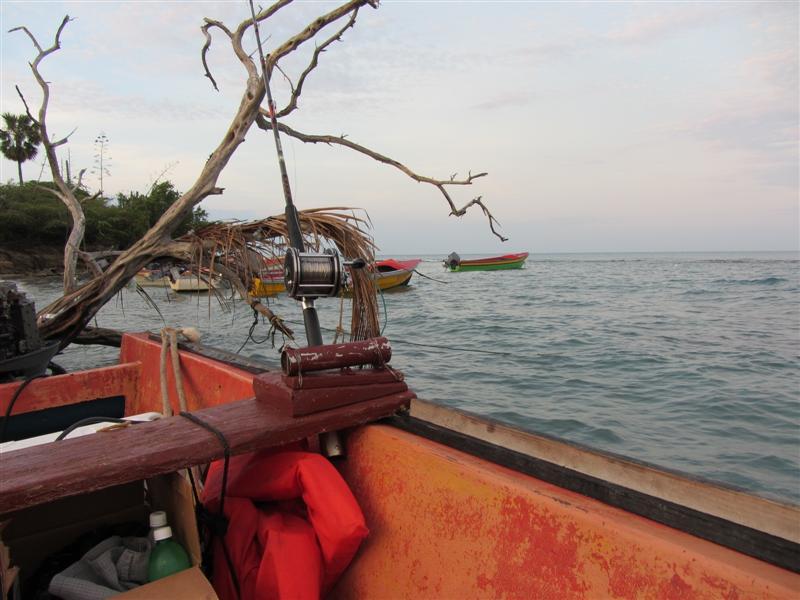 Name:  Boat (Medium).JPG Views: 1763 Size:  71.1 KB