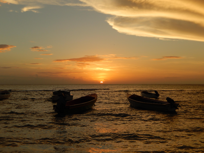 Name:  Jamaica 11-11-13 - Treasure Beach - 1289.JPG Views: 463 Size:  3.61 MB