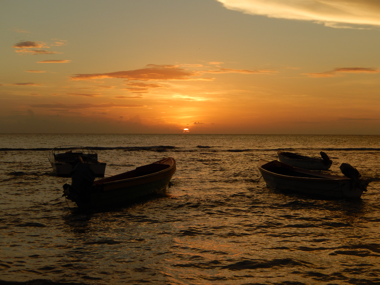 Name:  Jamaica 11-11-13 - Treasure Beach - 1290.JPG Views: 513 Size:  3.41 MB