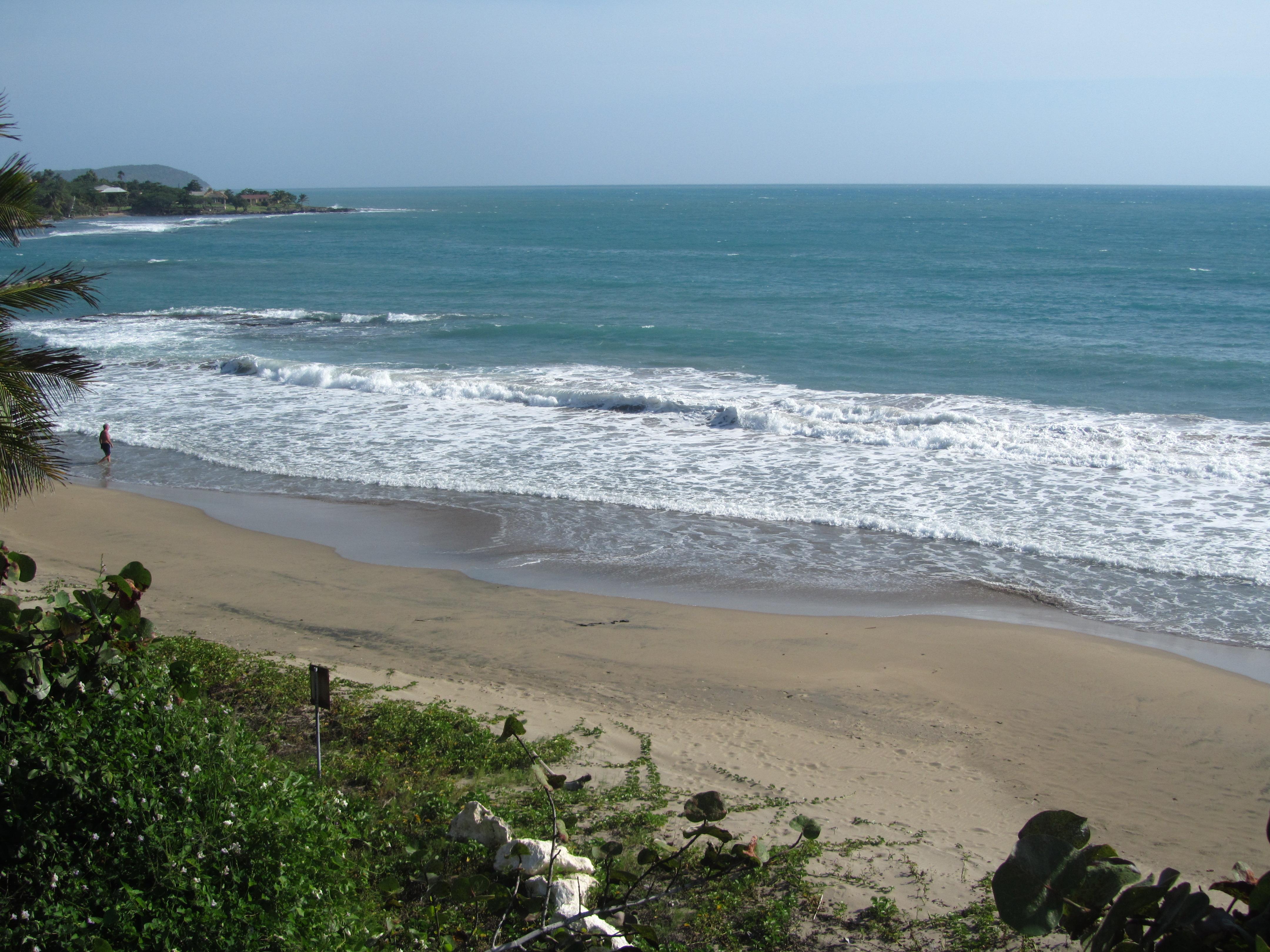Name:  Jamaica 11-14-13 - Treasure Beach - 6286.JPG Views: 486 Size:  3.55 MB