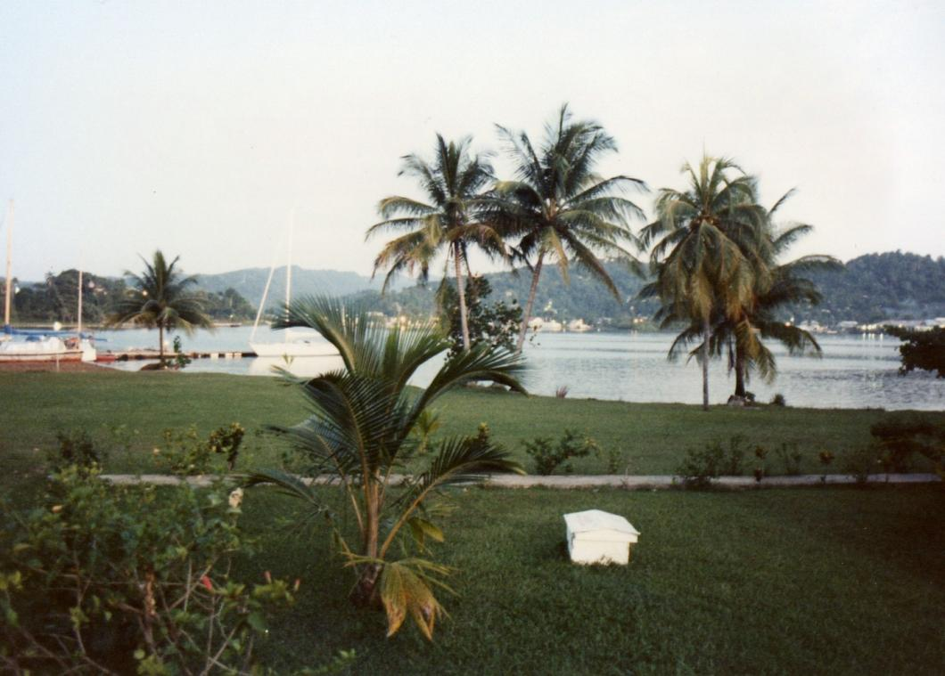 Name:  View from Navy Island.jpg Views: 497 Size:  91.8 KB
