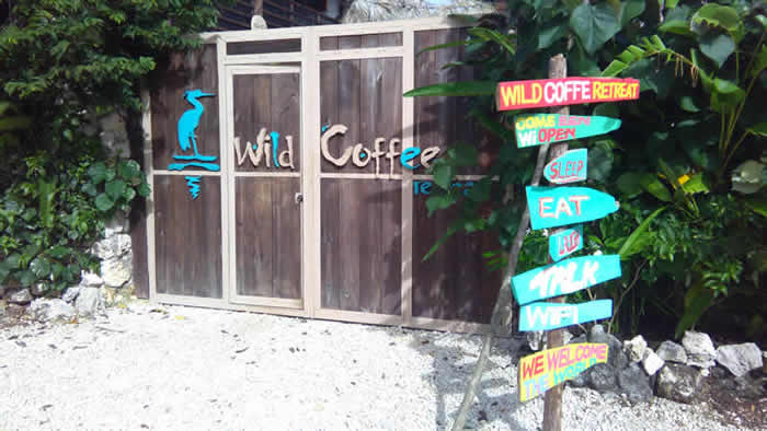 Wild Coffee Retreat in Negril Jamaica